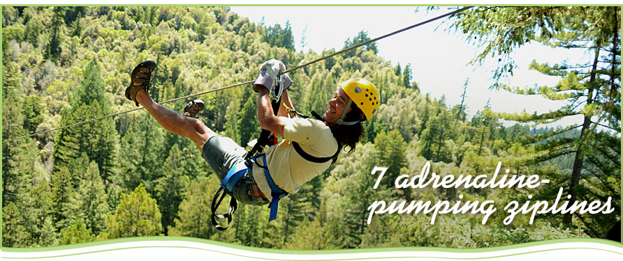 california zip line, zip line sonoma, sonoma adventures, zip lining, zip line san francisco, zip lines, zip line occidental ca, california zipline, sonoma zip line, california redwoods, zipline northern california