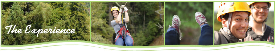 sky bridge adventure, canopy tour adventure