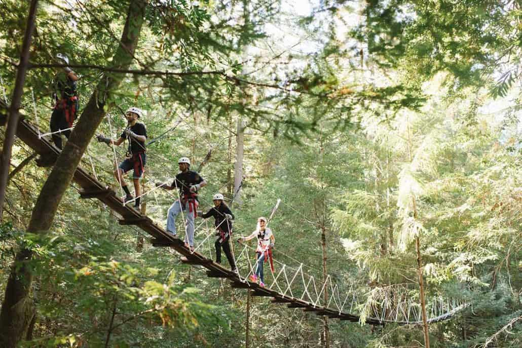 Forest Flight Zipline Tour In Sonoma County With Zip Lines